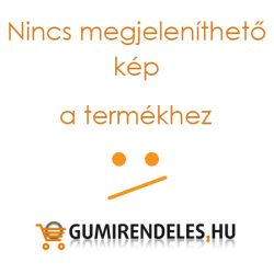 Firestone VanHawk Winter R 195/65R16C
